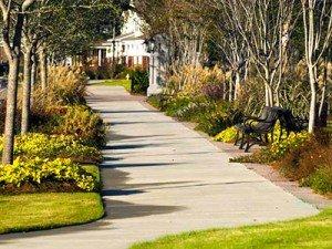 Daniel Island sidewalk park streetscape