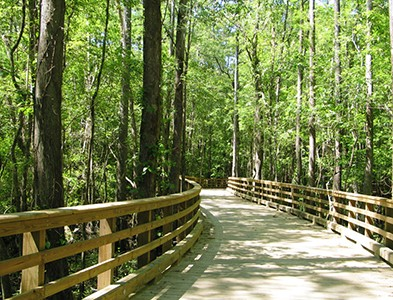 Wooded walking trail at Carolina Colours in New Bern, North Carolina