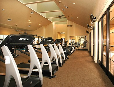 Gym and fitness center at Del Webb Southshore Falls in Apollo Beach Florida