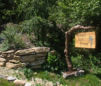 Hickory Nut Forest Eco-Community – NC Green Communities