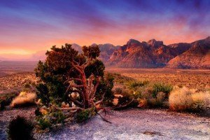 Red Rock Canyon (640x427)