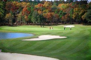 Skyview Foilage Golfers - Citrus Hills