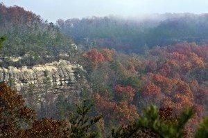 Cumberland Plateau - Fall