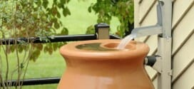 Using Rain Barrels and Other June Gardening Tips