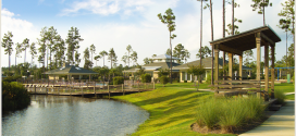 Palmetto Creek – A True Taste of Carolina