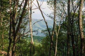 The Retreat on White Rock Mountain