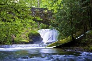 Retire to Washington State - Whatcom Falls