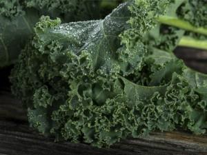 Kale - Best Places to Live