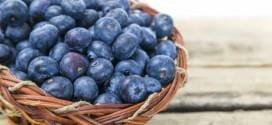 Blueberries: The Tiny Super Fruit