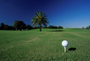 Florida Retirement Communities - TwinEagles - Naples, Florida - Golf
