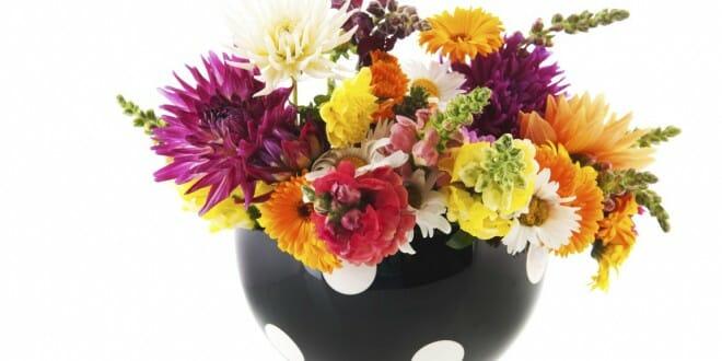 Flowers For the Fair