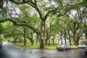 Best Places to Retire in Georgia - WaterWays Township - Savannah GA