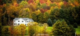 Fall Foliage – The How and Why