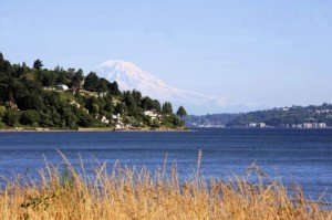 Puget Sound - Mount Rainier - Shea Homes at Jubilee - Washington State Retirement Communities - Washington State - Thurston County