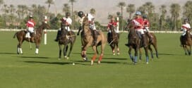Trilogy at the Polo Club: A Cool Desert Community