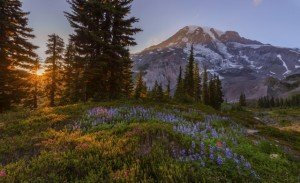 Washington State Retirement Communities - Trilogy at Tehaleh - Mount Rainier National Park