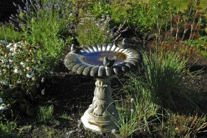 Gardening Tips - Bird Bath - Heated Bird Bath