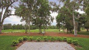 GolfCourse View