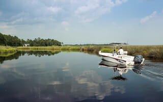 Osprey Cove June 2015 Newsletter
