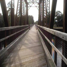 Withlacoochee State Forest Trail Bridge