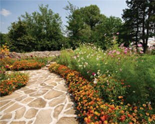 Best of Best Community Gardens - The Thoms Estate - Asheville, NC