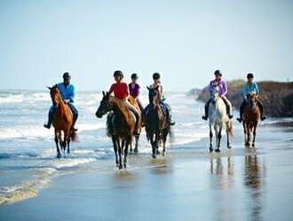 Best Equestrian Facilities - Seabrook Island - Seabrook Island, SC