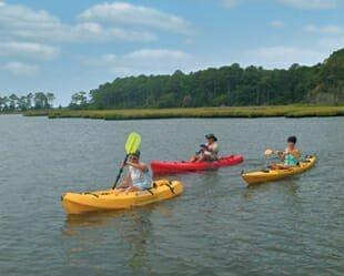 Best of Best Kayaking - Bayside - Selbyville, DE