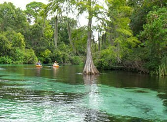 Best of Best Kayaking - GlenLakes - Weeki Wachee, FL