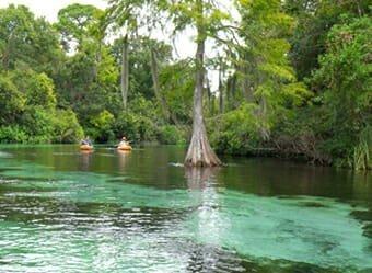 Best of Best Kayaking - GlenLakes - Weeki Wachee, FL