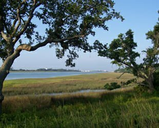 Best of Best Nature Trails - Landfall - Wilmington, NC
