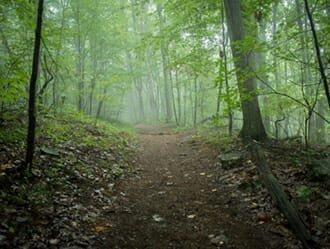 Best of Best Nature Trails - Old Toccoa Farm - Blue Ridge, GA
