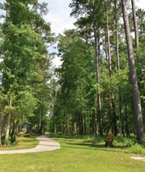Best Walking Trails - Carolina Colours - New bern, NC