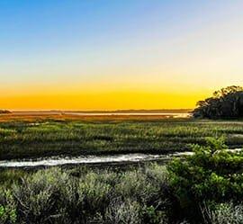 Best Nature Preserves -Brady Point Preserve - Greenville, NC