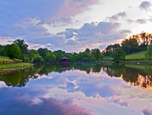 Virginian beauty