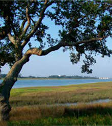Best of the Best Intracoastal Waterway Views, Landfall - Wilmington, NC