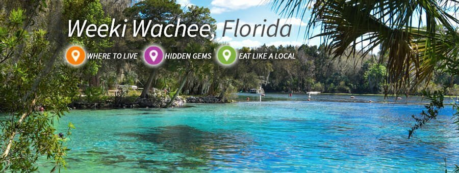 Explore the Wonders of Weeki Wachee, FL