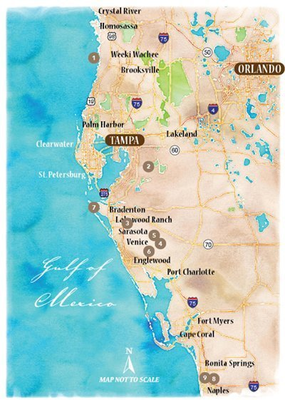 Venture Out to The Coast of Southwest Florida