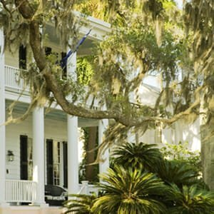 Venture Out to the Lowcountry