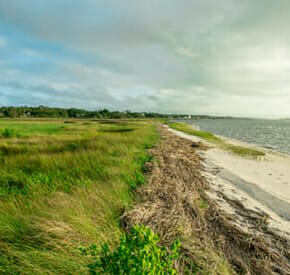 TidalWalk - Coastal North Carolina Planned Community