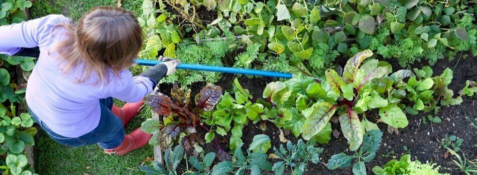 Community Garden Retirement Communities