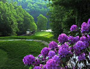 Fairfield Glade & Fairfield North - Tennessee Resort Communities